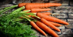 braces carrots